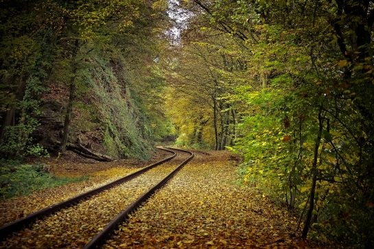 autumn-1827190_1920